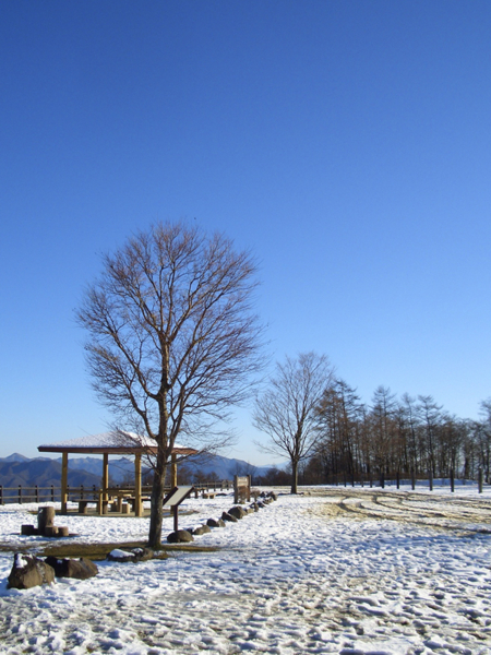 200912清里・まきば公園