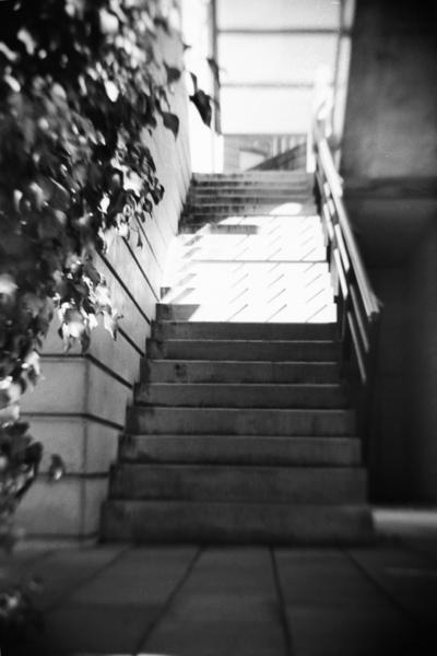 [二眼レフカメラ][大人の科学マガジン][Haiku]