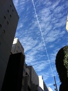 f:id:Magnoliarida:20130221211610j:image