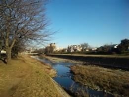 f:id:Makotsu:20100101152046j:image