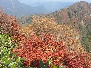 f:id:Makotsu:20121013142817j:image