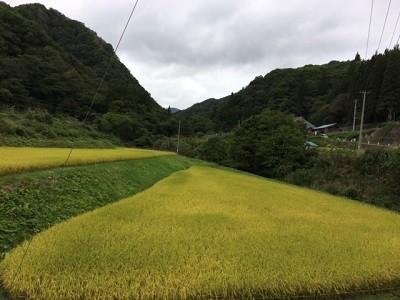 f:id:Makotsu:20160924123943j:image