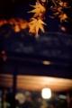 『京都新聞写真コンテスト 妙心寺 退蔵院 秋の特別拝観』