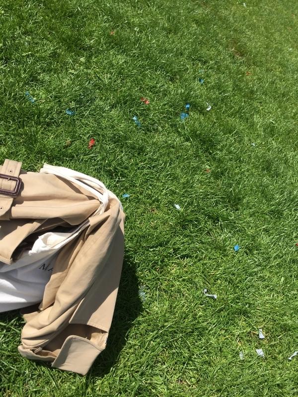 アンヴァリット廃兵院の芝