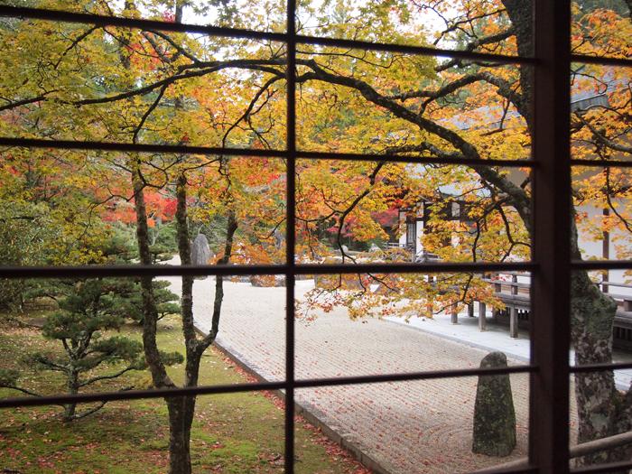 蟠龍庭の紅葉