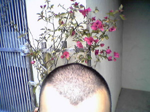 f:id:Marichan:20050802015914j:image
