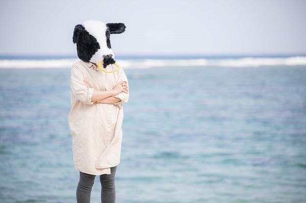 海辺で悩む牛の画像