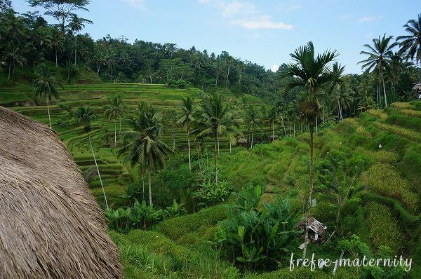 インドネシアの風景写真