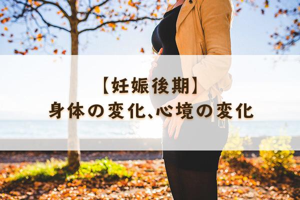f:id:Mariko154:20181205110708j:plain