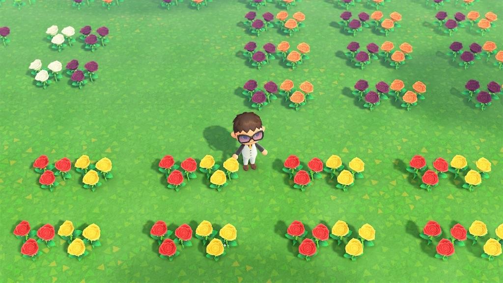 花 の 交配 あつ 森 植え 方