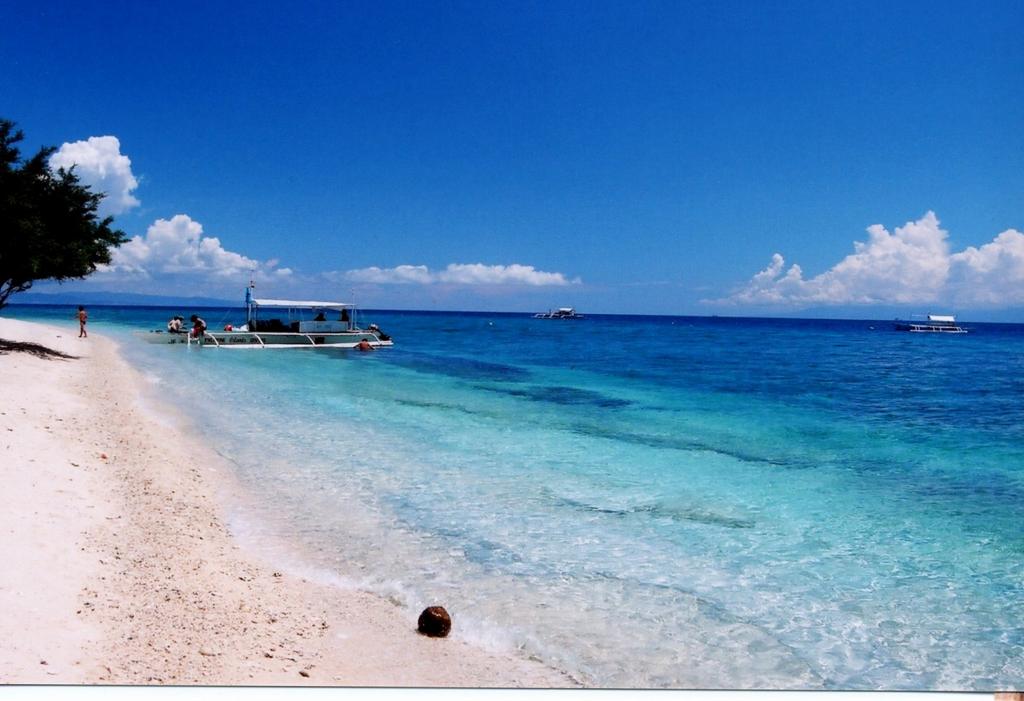 「セブ ベストシーズン 海」の画像検索結果