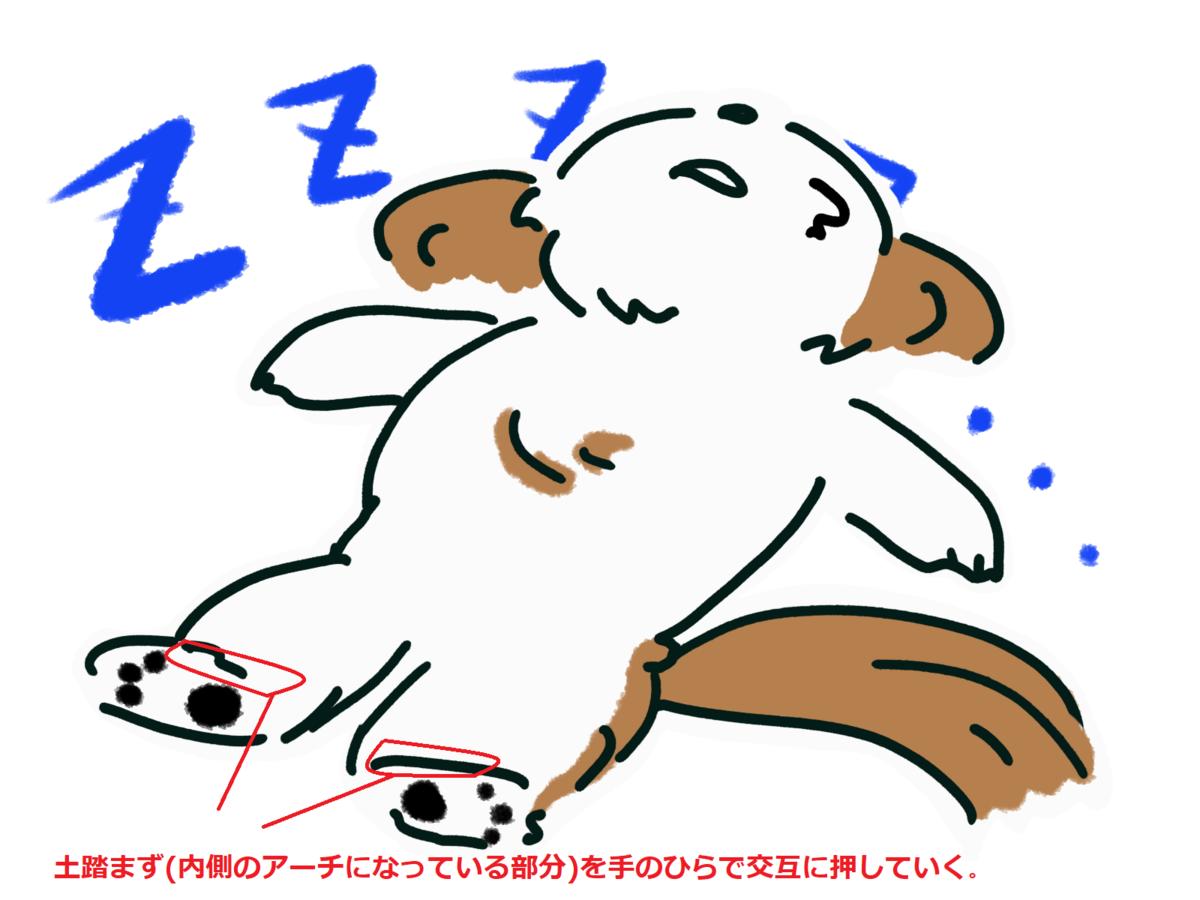 f:id:Masamasa2023:20200513172023p:plain