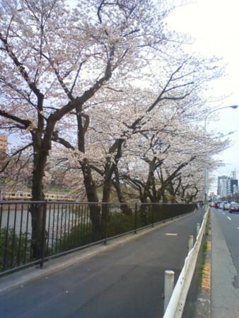 f:id:MasaoNagata:20110408223048j:image