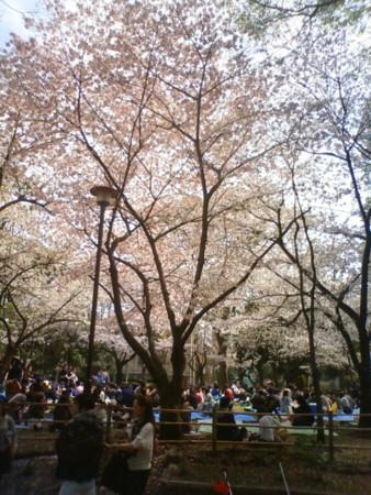 f:id:MasaoNagata:20110410125852j:image