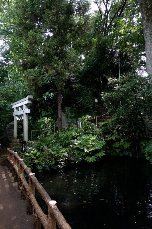 f:id:Mayugeloki:20171220010401j:plain