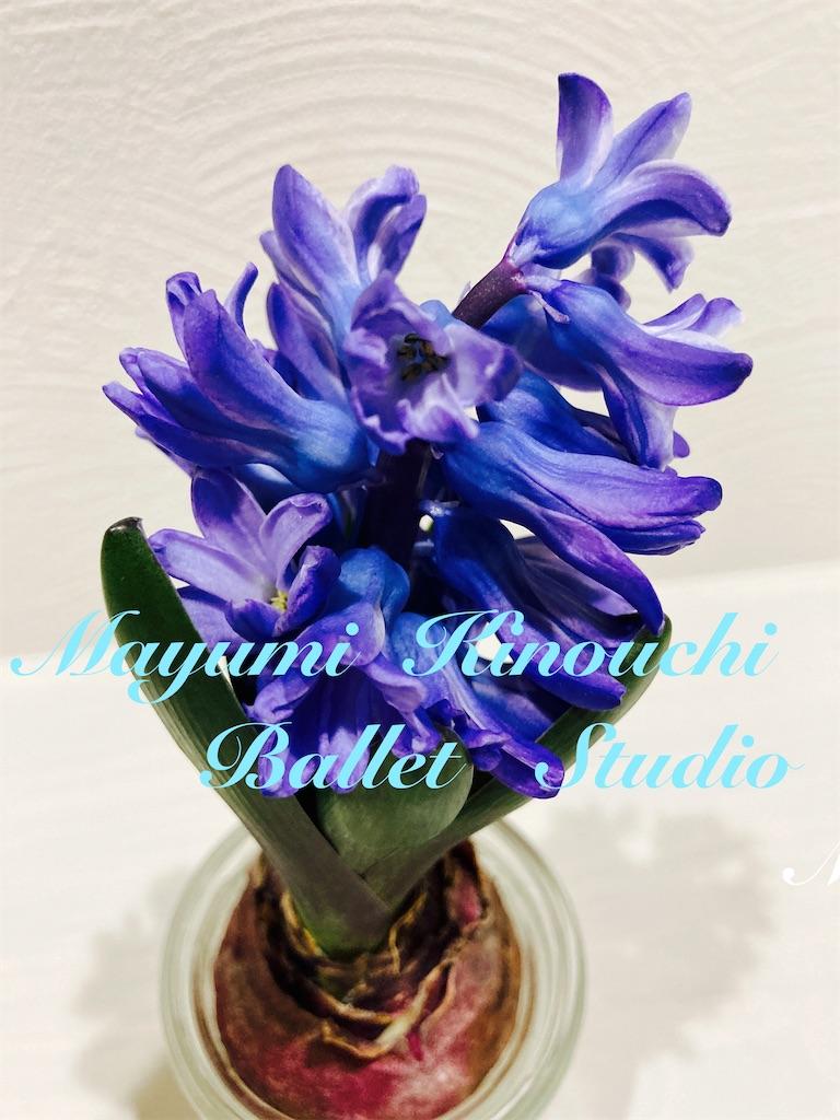 f:id:MayumiKinouchiBalletStudio:20210209014712j:image