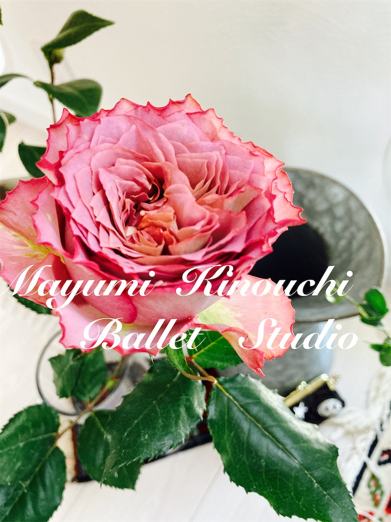 f:id:MayumiKinouchiBalletStudio:20210428212922j:image