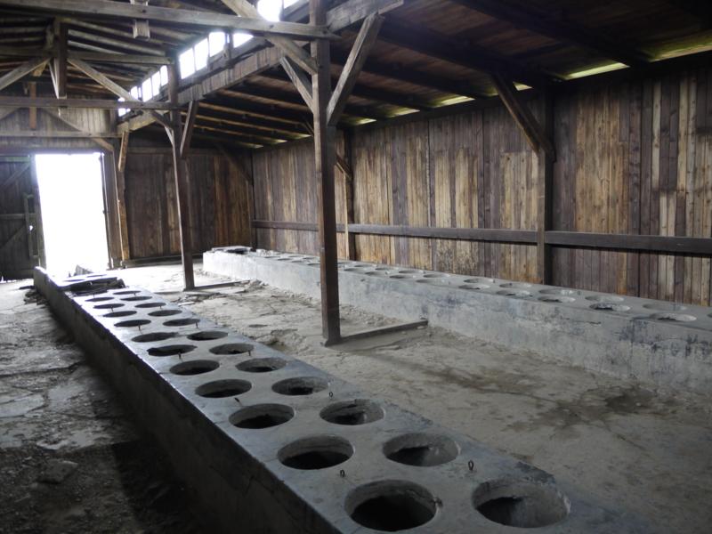アウシュヴィッツ=ビルケナウ強制収容所の画像 p1_25