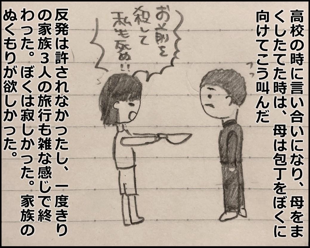 f:id:Megumi_Shida:20190426125406j:plain