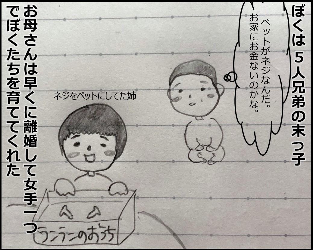 f:id:Megumi_Shida:20190514083442j:plain
