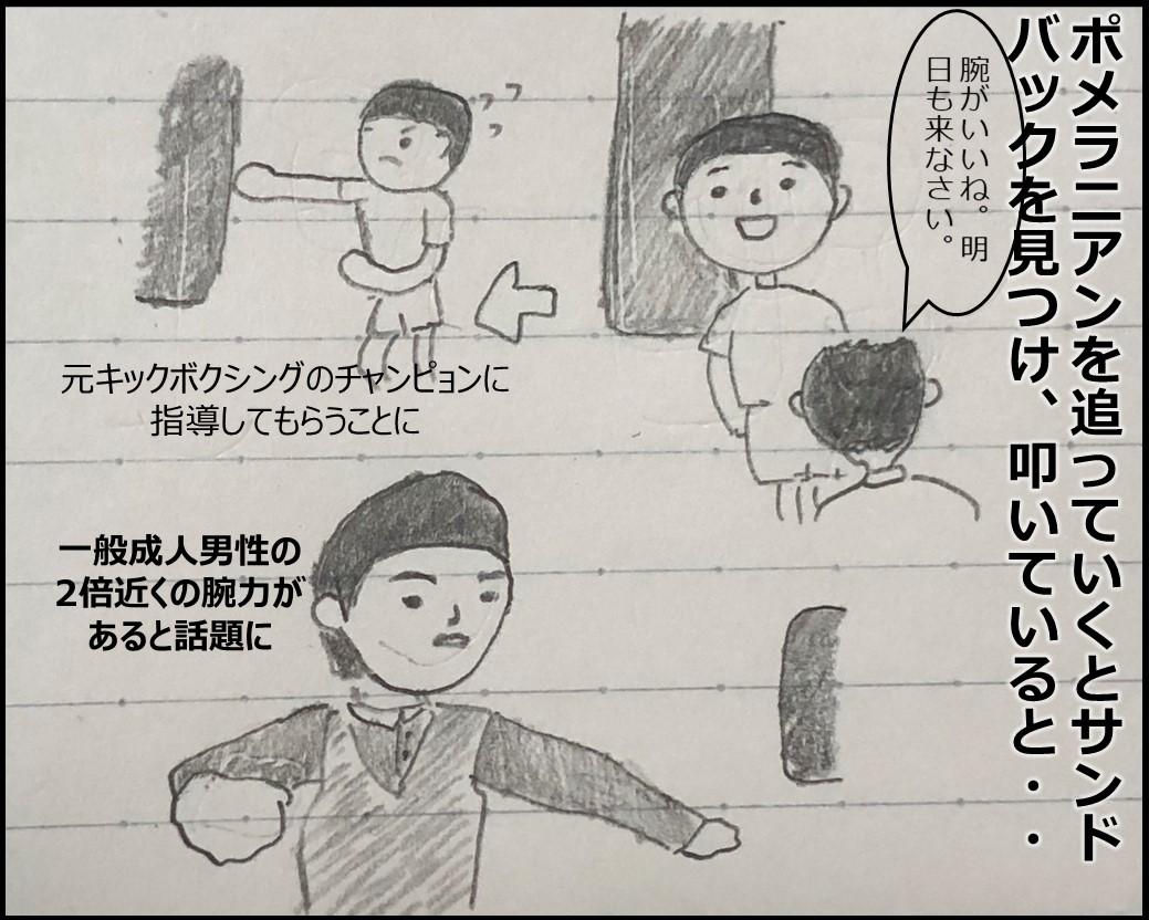f:id:Megumi_Shida:20190519010119j:plain