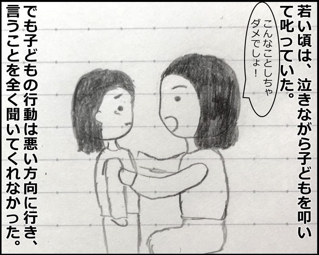 f:id:Megumi_Shida:20190622111200j:plain