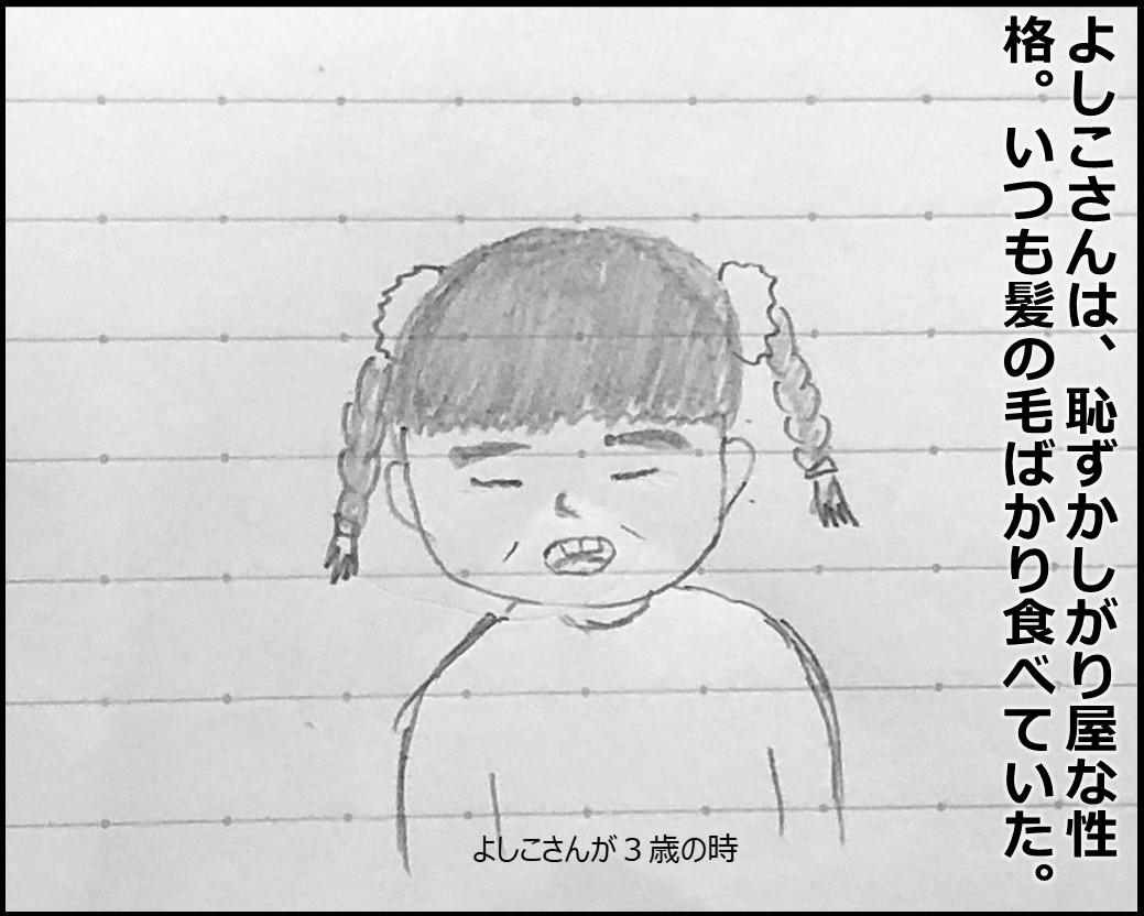 f:id:Megumi_Shida:20190717211811j:plain