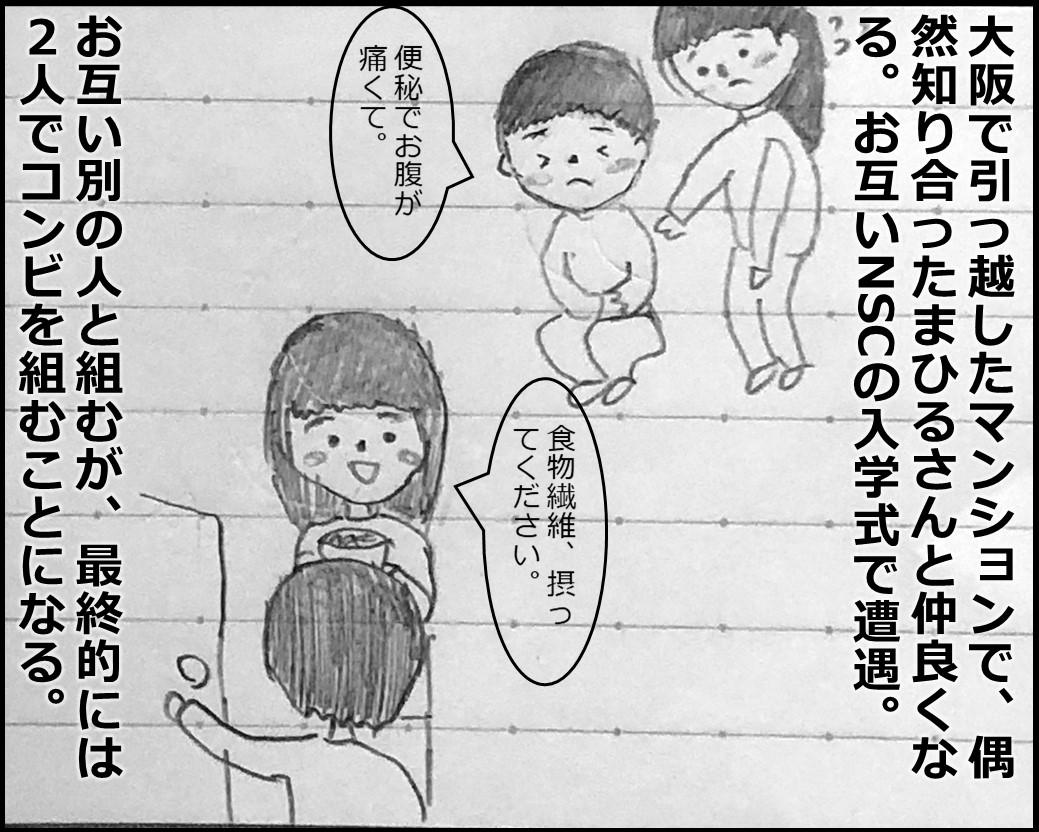 f:id:Megumi_Shida:20190717211831j:plain