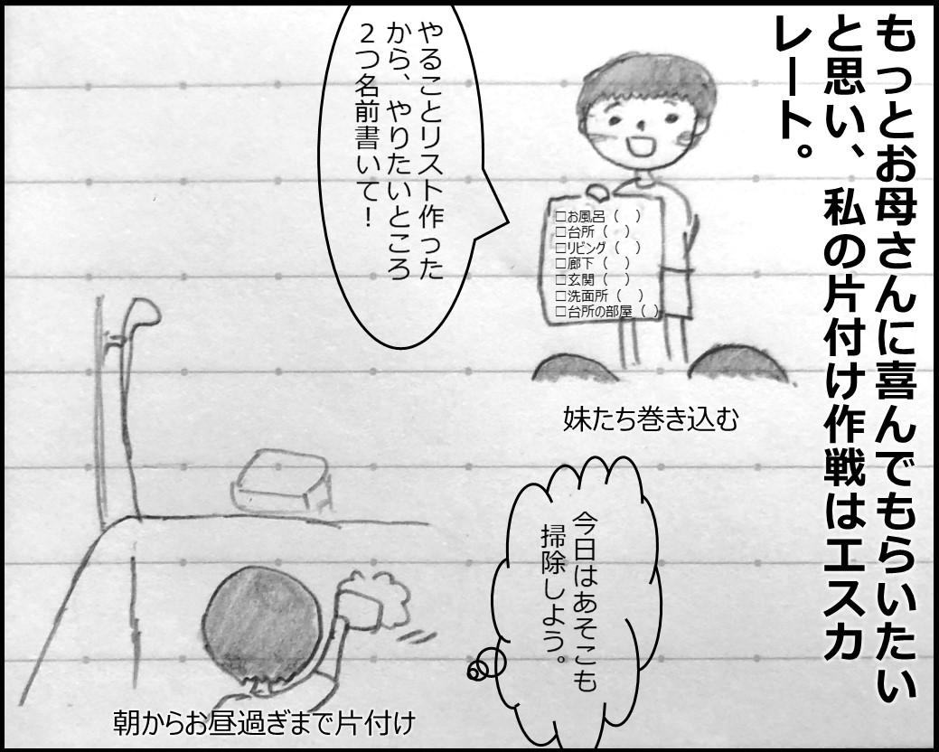 f:id:Megumi_Shida:20190802224209j:plain