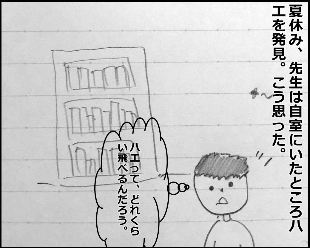 f:id:Megumi_Shida:20190901054010j:plain