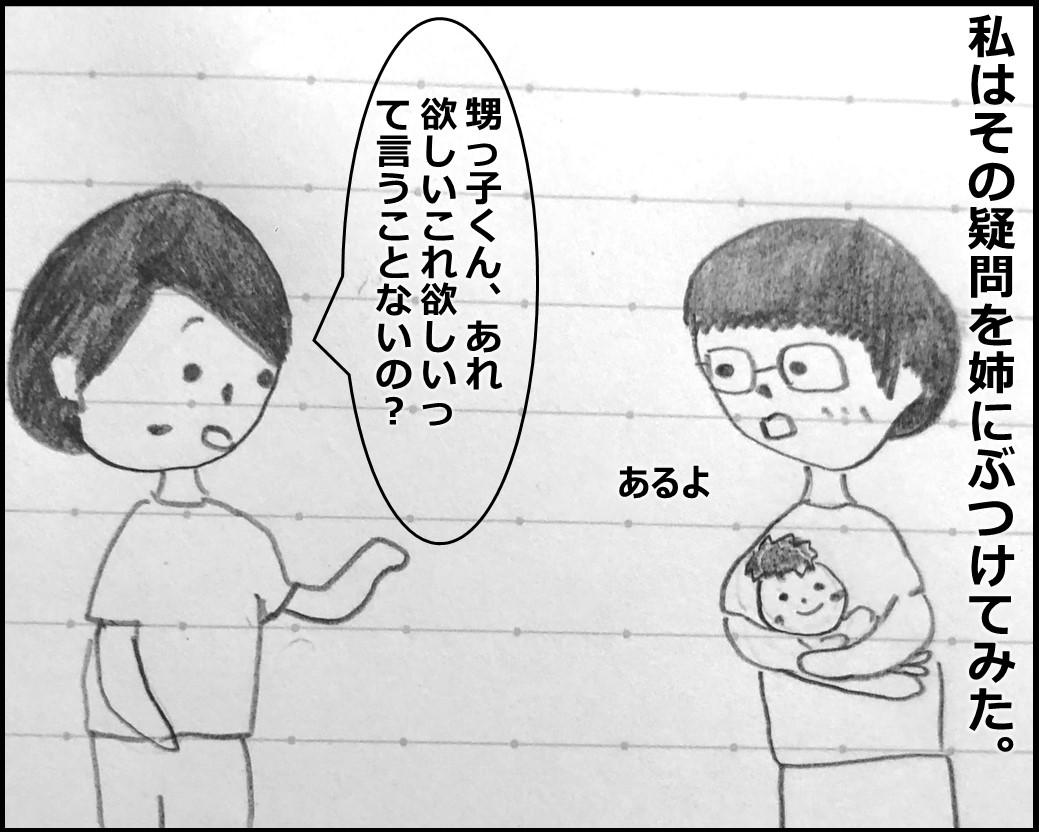 f:id:Megumi_Shida:20191005185401j:plain