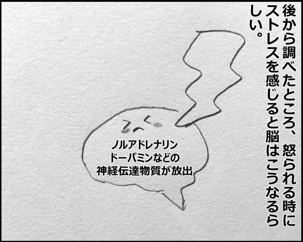f:id:Megumi_Shida:20191028080808j:plain