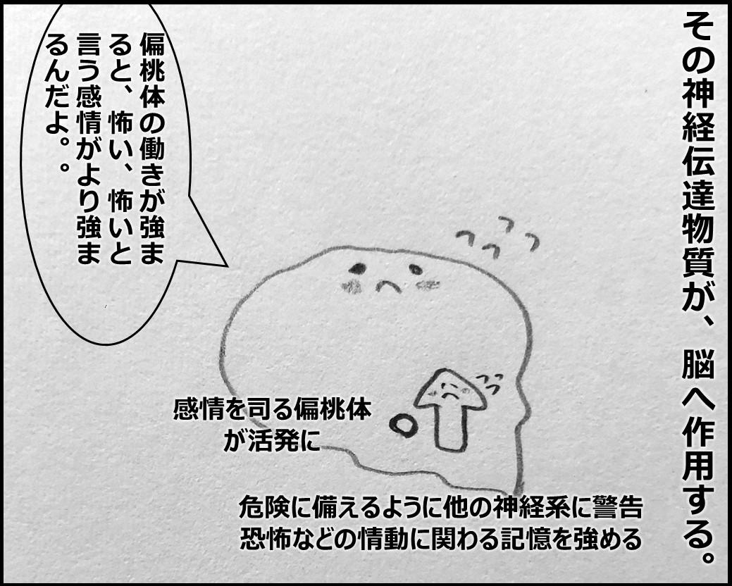 f:id:Megumi_Shida:20191028081144j:plain