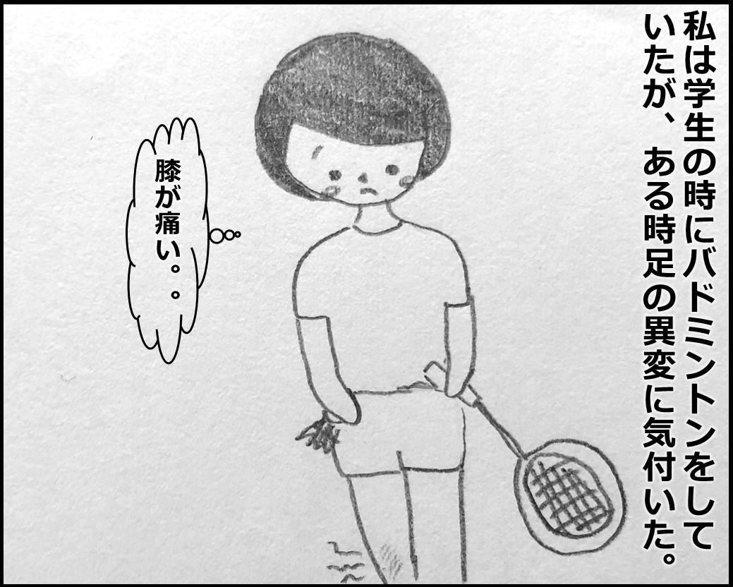 f:id:Megumi_Shida:20191104160636j:plain