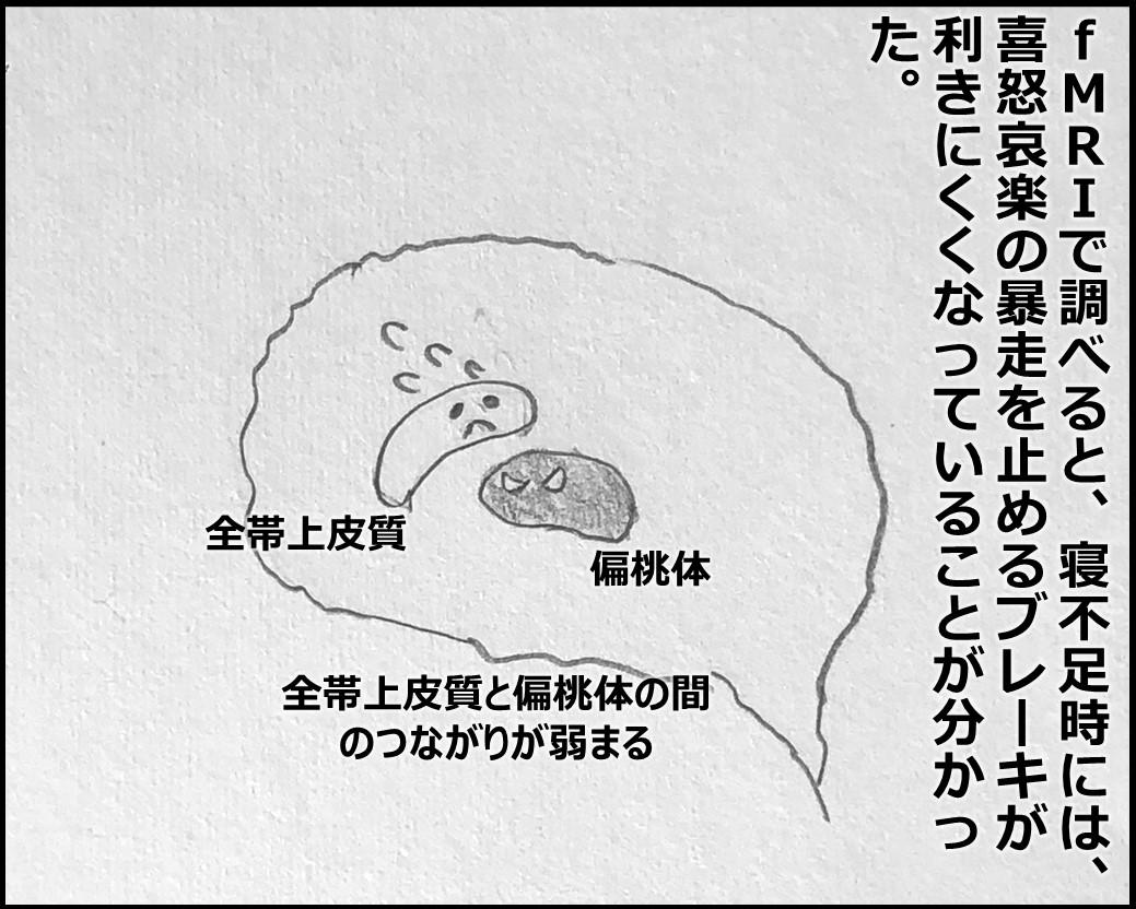 f:id:Megumi_Shida:20191106160222j:plain