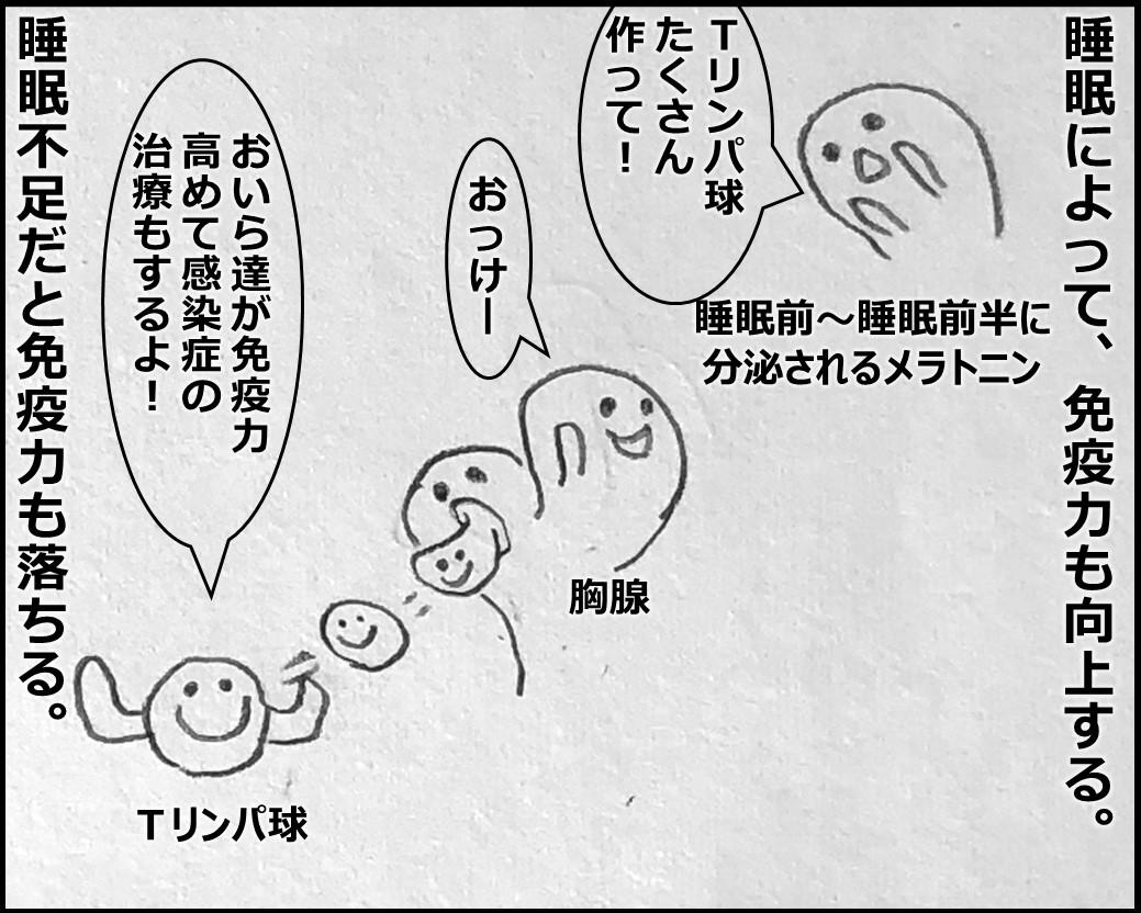 f:id:Megumi_Shida:20191106160250j:plain