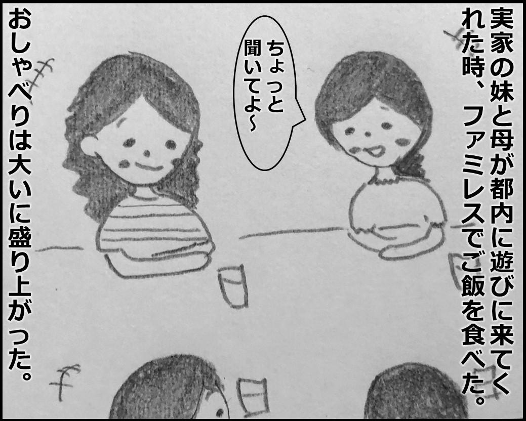 f:id:Megumi_Shida:20191111194802j:plain