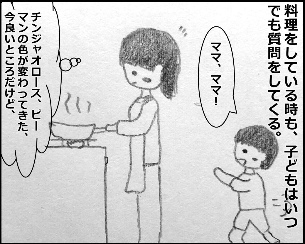 f:id:Megumi_Shida:20191112130203j:plain