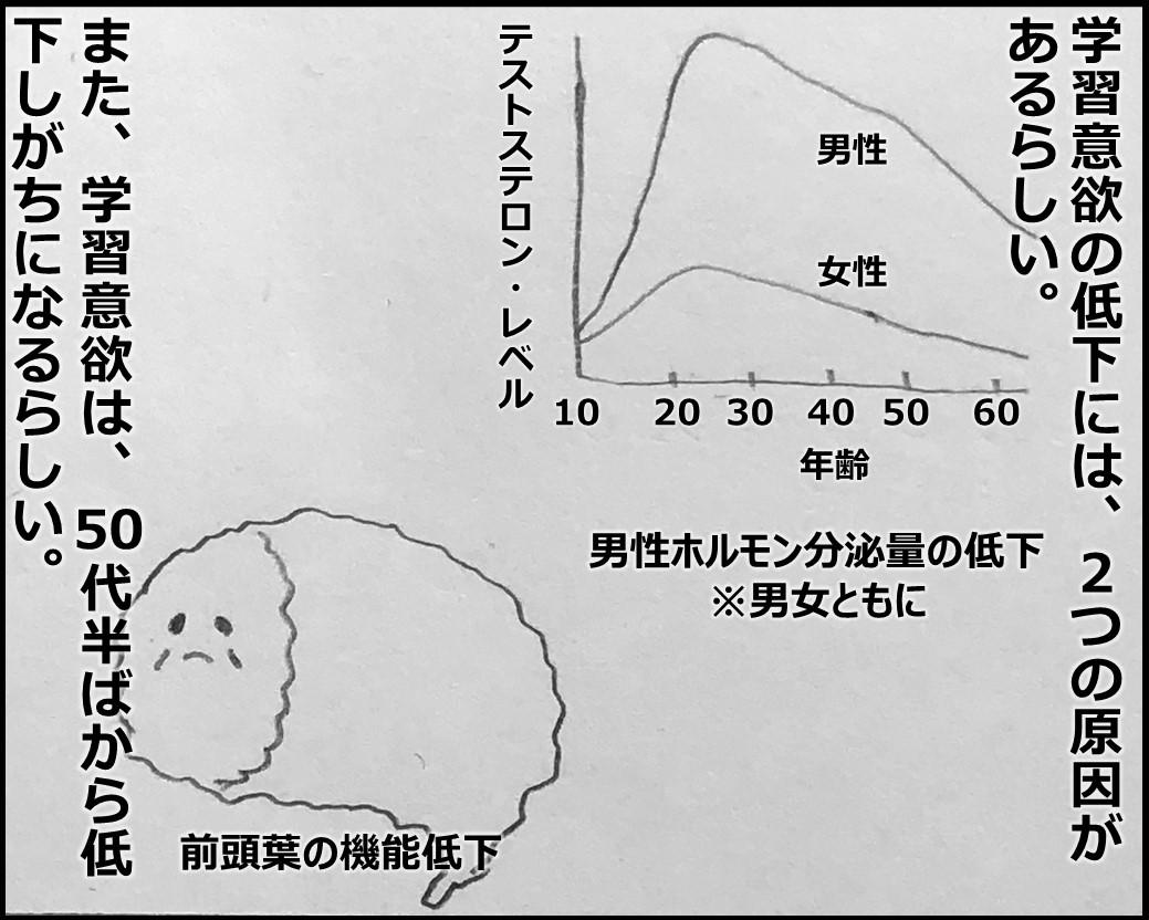 f:id:Megumi_Shida:20191115125900j:plain