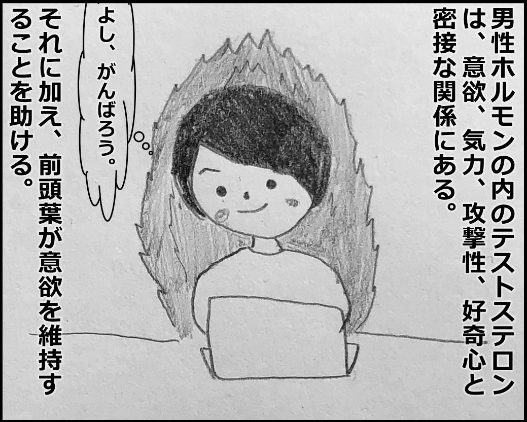 f:id:Megumi_Shida:20191115125906j:plain