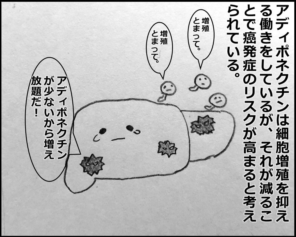 f:id:Megumi_Shida:20191116174235j:plain