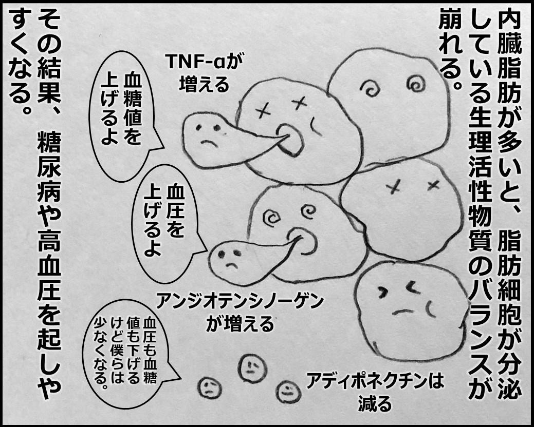 f:id:Megumi_Shida:20191116174241j:plain