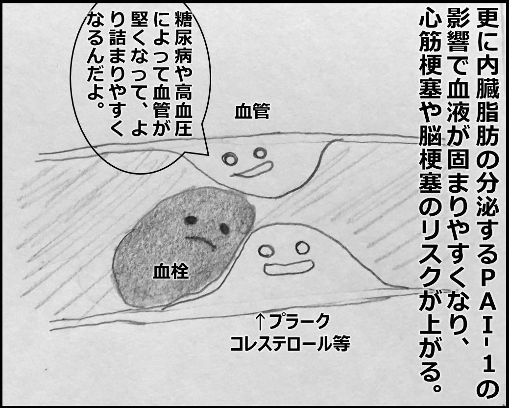 f:id:Megumi_Shida:20191116174248j:plain