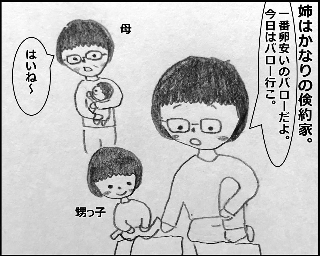 f:id:Megumi_Shida:20191119191821j:plain