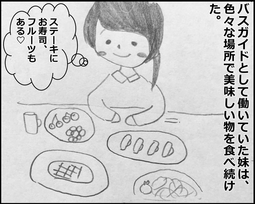 f:id:Megumi_Shida:20191205134654j:plain