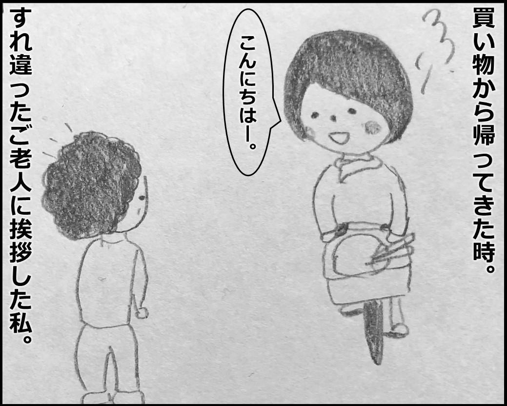 f:id:Megumi_Shida:20191225153454j:plain