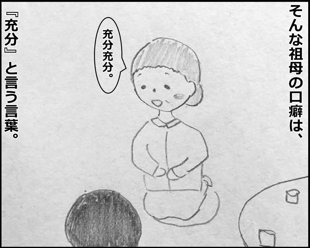 f:id:Megumi_Shida:20200106131723j:plain