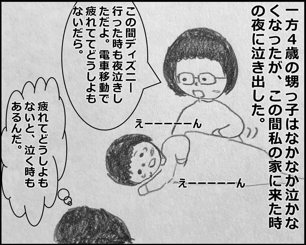 f:id:Megumi_Shida:20200123112042j:plain