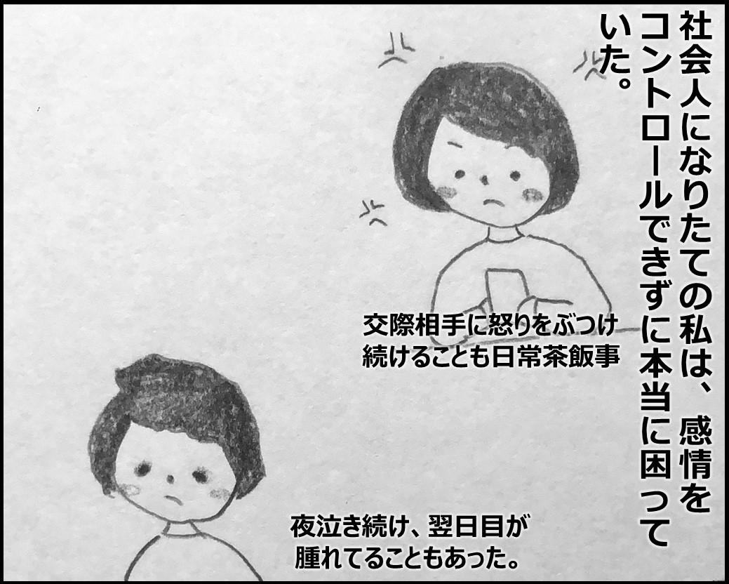f:id:Megumi_Shida:20200129092141j:plain