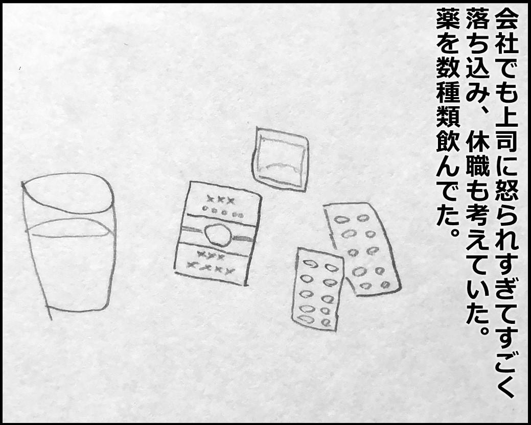 f:id:Megumi_Shida:20200129092145j:plain